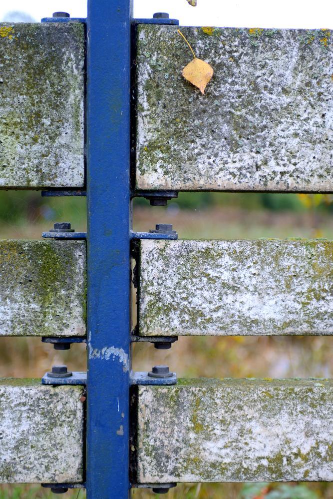 Beton hegn