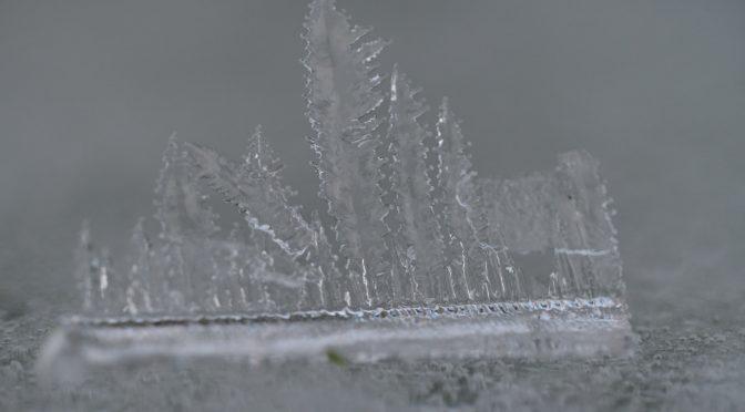 Rimfrost i december